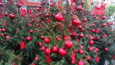 Kerstbomen in Chinatown