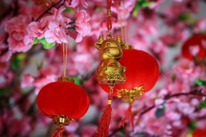 Chinese ox ornament in a blooming peach tree