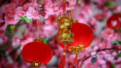 Chinese New Year: the Year of the Ox
